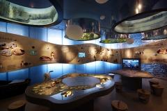 Sartų regioninio parko lankytoju centras