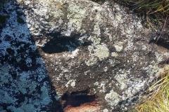 Pakriaunio pėduotas akmuo II