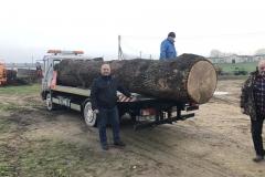 4. Prienų rajono Nemuno žemės ūkio bendrovės vadovas Algimantas Šidlauskas (dešinėje, rūko) nuoširdžiai ir be atlygio rūpinosi ąžuolo nupjovimu, saugojimu ir pakrovimu į transportą